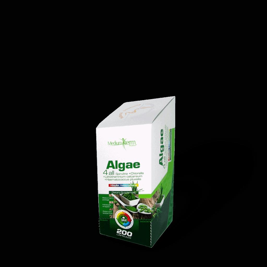 Algae 4 all